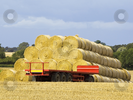 Round bales and trailer stock photo, A stack of round bales with an empty red trailer at harvest time in summer by Mike Smith