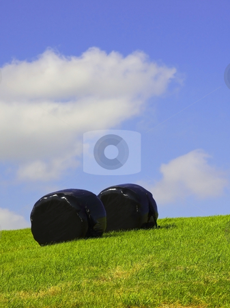 Black wrapped bales stock photo, Two bales wrapped in black sheeting under a summer sky by Mike Smith