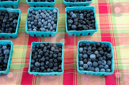 Basket Of Blue Berries stock photo, Blueberry sale at the framers market. Berries packed in small blue paper baskets on a plaid colored table top by Lynn Bendickson