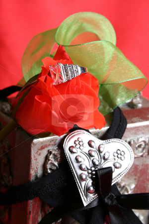 Valentine Proposal stock photo, A valentines day proposal with a diamond ring inside red rose by Vanessa Van Rensburg
