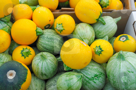 Green And Yellow Squash stock photo, Different variaties of summer squash in boxes for sales at the farmers market by Lynn Bendickson