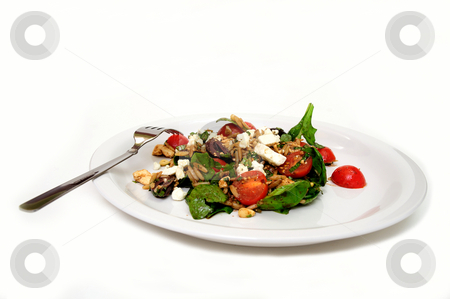 Spinach And Orzo Salad stock photo, Spinach, Greek Orzo pasta, cherry tomatoes, olives and Feta cheese served on a white plate isolated. by Lynn Bendickson