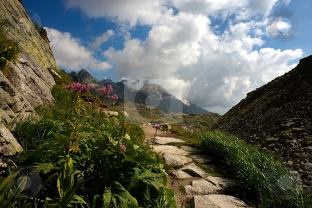 Cottage in valley stock photo, Flowers by mountain path with a cottage in valley by Juraj Kovacik