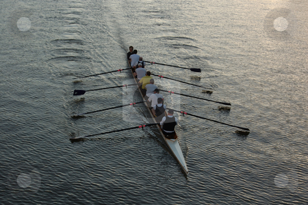 Rowers on the River stock photo, Early morning rowers training on the Yarra River in Melbourne, Australia by Lee Torrens