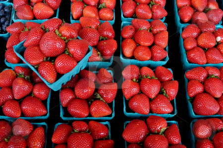 Strawberries stock photo, USA, Washington, Seattle, Strawberries for Sale at Pike Place Market by David Ryan