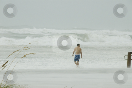 Lone Beach Walker stock photo, PENSACOLA - SEP 1: A walks out onto the dangerous beach during Hurricane Gustav on September 1, 2008.  Gustav made landfall in Lousiana 1 mph below a Cat 3. by A Cotton Photo