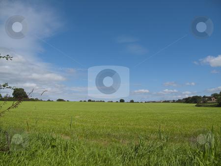 Green Field - Blue Sky stock photo, A wondeful Green Field with a blue sky by Stephen Clarke