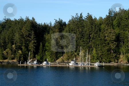 Orcas Island stock photo, USA, Washington, Orcas Island by David Ryan
