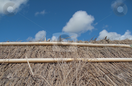 Summer House - Thatched Roof stock photo, A closeup of the thatched roof of a summer house by Stephen Clarke