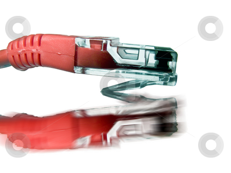 Computing - Red CAT5 Cable stock photo, A red cat5 cable isolated on a white background with a reflection by Stephen Clarke