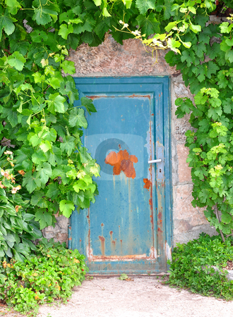 Door to the wine cellar stock photo, Door to the wine cellar by Robert Biedermann