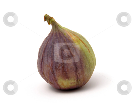 Fresh fig stock photo, Fresh fig by Robert Biedermann
