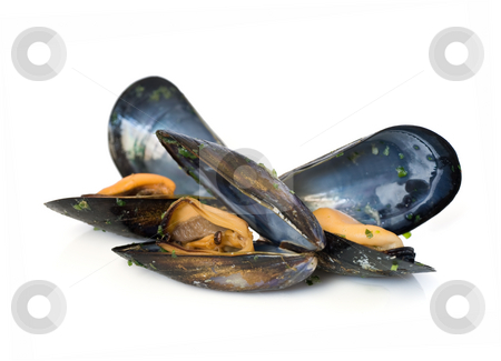 Three mussels stock photo, Three mussels boiled with garlic isolated on white background by ANTONIO SCARPI