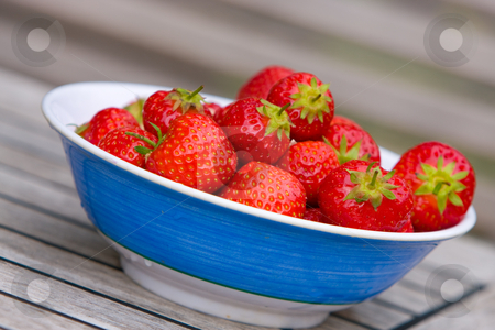 Strawberries stock photo, Strawberries in blue bowl by Karen Arnold