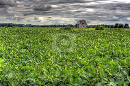 Barn in Scenic Rural Landscape in HDR stock photo, Scenic rural landscape with rustic barn done in HDR by Dennis Crumrin