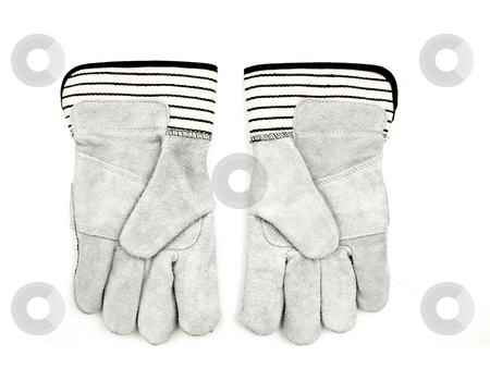 Work gloves stock photo, Pair of work gloves on a white background by John Teeter