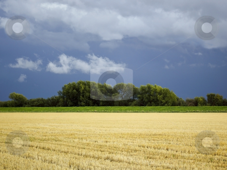 Darkening skies stock photo, A view across stubble fields to a flood bank and willow trees under a darkening sky by Mike Smith