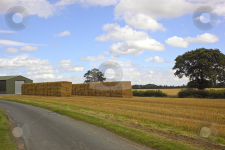 Farm scene stock photo, A farm scene with bales under a blue sky by Mike Smith
