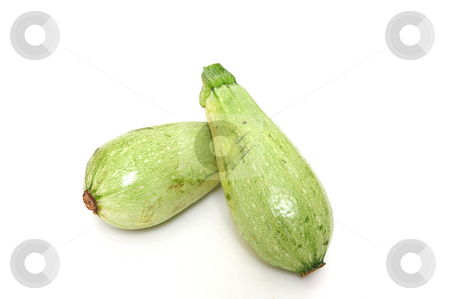 SUMMER SQUASH stock photo, Lebanese White Bush Marrow, an heirloom type squash on a white background by Lynn Bendickson