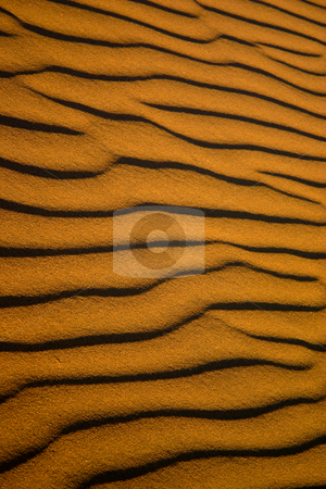 Ripples of sand stock photo, Ripples in sand dunes in the Namib desert Namibia by Darren Pattterson