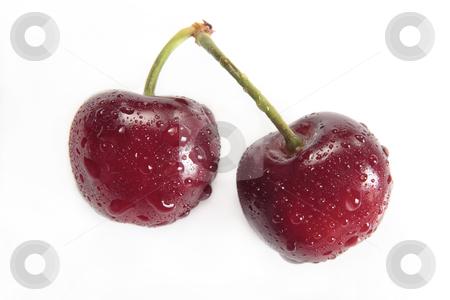 Cherries stock photo, Cherries with water droplets by Bernardo Varela