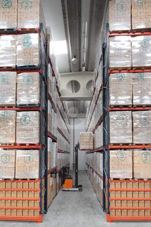 Logistics stock photo, Logistics warehouse indoor view by Bernardo Varela