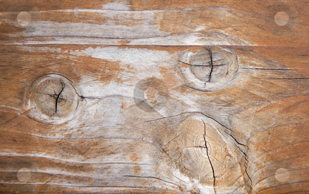 Weathered wooden panel 2 stock photo, Close-up of an old weatered wooden panel nice for backgrounds by Karin Claus