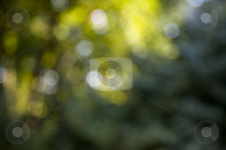 Green bokeh 1 stock photo, Nice abstract background of green and yellow bokeh by Karin Claus