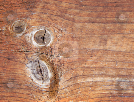 Weathered wooden panel 3 stock photo, Close-up of an old weatered wooden panel nice for backgrounds by Karin Claus