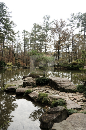 Tranquil Pond stock photo, A tranquil pond and pine tree alone in the woods by Kevin Tietz