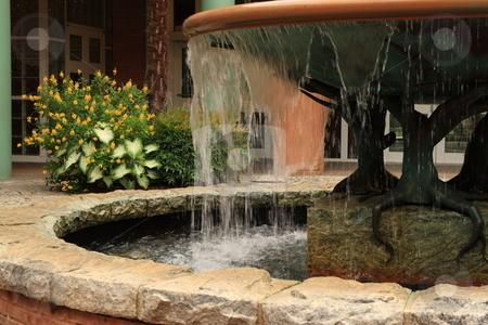 Water Fountain stock photo, Botanical Gardens by Jack Schiffer