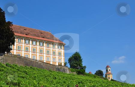 Vineyard at Castle Stainz, Styria, Austria stock photo, Vineyard at Castle Stainz, Styria, Austria by Robert Biedermann