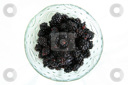 Bowl of Fresh Blackberries - Healthy Eating stock photo, Bowl of Fresh Blackberries - Healthy Eating by Sam D'Cruz