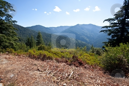Bear Camp Road stock photo, Bear Camp Road is a rugged mountain road traversing the Klamath Mountains in Josephine and Curry counties in the U.S. state of Oregon. by Mariusz Jurgielewicz