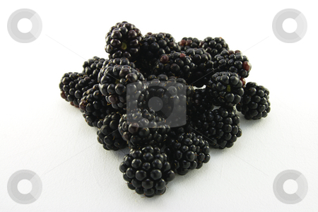 Pile of Blackberries  stock photo, Pile of delicious ripe blackberries on a white background by Keith Wilson
