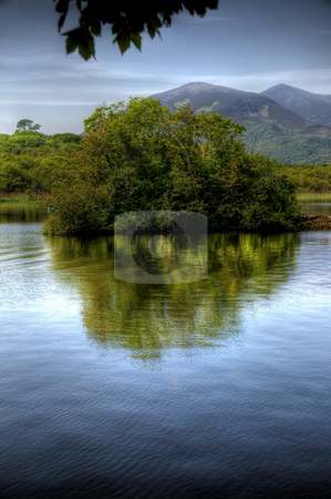 Lonesome Bush in Kerry Lake stock photo, A scenic image of a small bushy island in a lake in Co Kerry, Ireland. The bsuh is casting a reflection in the water and there are overhanging leaves completing the composition. A group of mountains can be seen in the background. by Stephen Kiernan