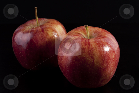 Two red apples on black stock photo, Two red apples on a black background by Sharon Arnoldi