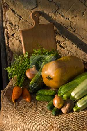 Vegetables stock photo, Autumnal still life with different vegetables on the wall background by Gennady Kravetsky