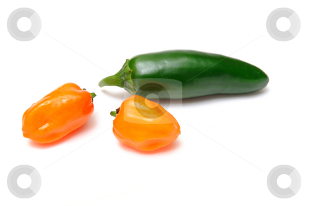 Habanero and Jalapeno Chilies stock photo, Two habanero chilies and a single jalapeno pepper isolated on a white background by Lynn Bendickson