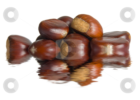 Group of chestnuts stock photo, A group of chestnuts, symbol of autumn season, are reflected on water by ANTONIO SCARPI