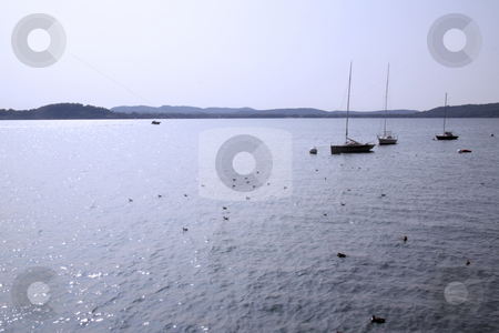 Lake stock photo, Beautiful view of lake and blue sky, with sails by Fabio Alcini