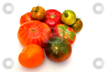 Colorful Tomatoes stock photo, Different types of heirloom tomatoes on a light colored background by Lynn Bendickson