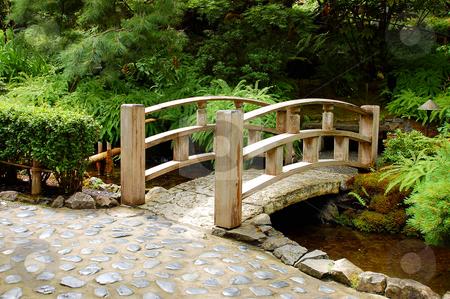 Garden bridge stock photo, Wooden garden bridge in botanical setting by perlphoto