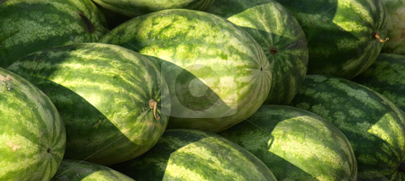 Watermelon for sale stock photo, Watermelon for sale at the market during the summer by Tim Markley