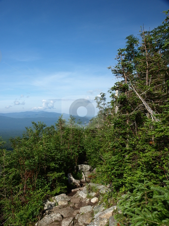 Jewel trail view stock photo, View along the Jewel trail which goes up Mt. Washington in the White Mountains of New Hampshire. The view is during the summer by Tim Markley