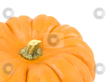 Small gourd pumpkin stock photo, Small gourd pumpkin on a white background by John Teeter