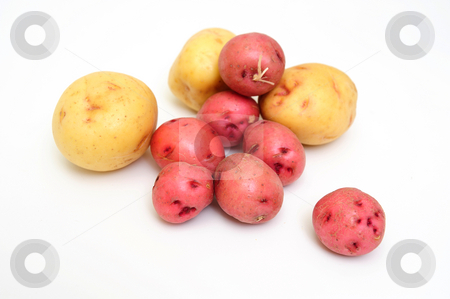 New Potatoes stock photo, Red and white new small potatoes isolated on a white background by Lynn Bendickson