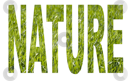 Nature arial font stock photo, Nature  arial font made of a green wheat background by Laurent Dambies