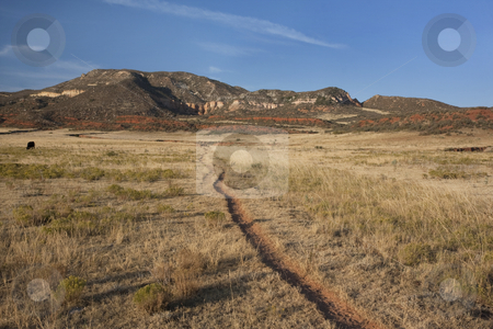 Cattle trail in Colorado mountain valley stock photo, Cattle trail in Red Mountain Open Space, semi desert landscape in northern Colorado near Wyoming border, late summer by Marek Uliasz