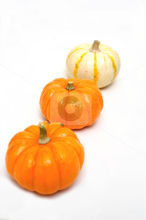 Three Decorative Pumpkins stock photo, Decorative orange and white pumpkins isolated on a white background by Lynn Bendickson